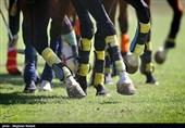 مسابقات چوگان جام گابریک