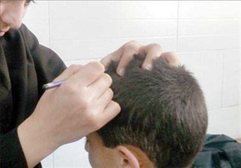 5 هزار دانشآموز مبتلا به شپش در استان فارس درمان شدند