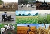 محصولاتی که روی دست کشاورزان لرستانی ماند
