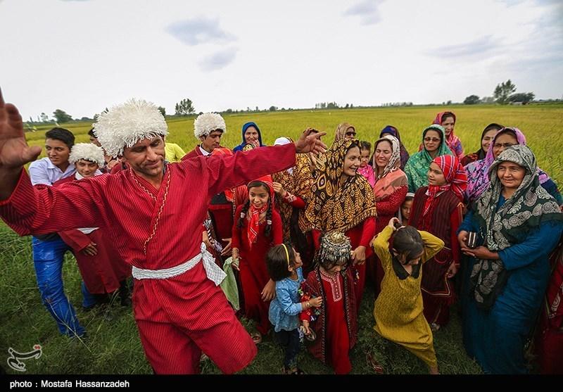 یک عروسی سنتی در بندرترکمن
