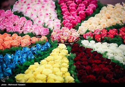 Tehran Hosts 8th Seasonal Flower Exhibition