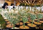 افتتاح هشتمین نمایشگاه فصلی گل و گیاه تهران