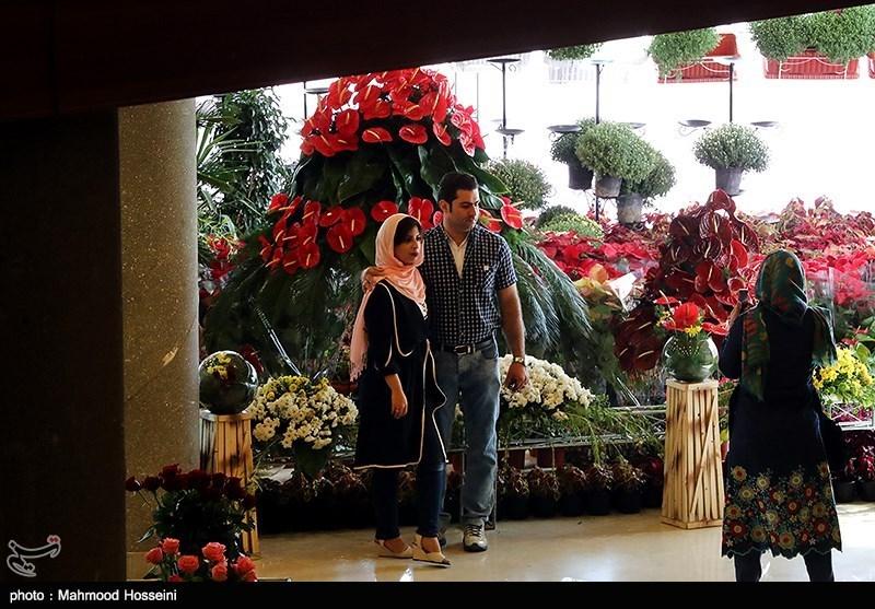 هشتمین نمایشگاه فصلی گل و گیاه تهران