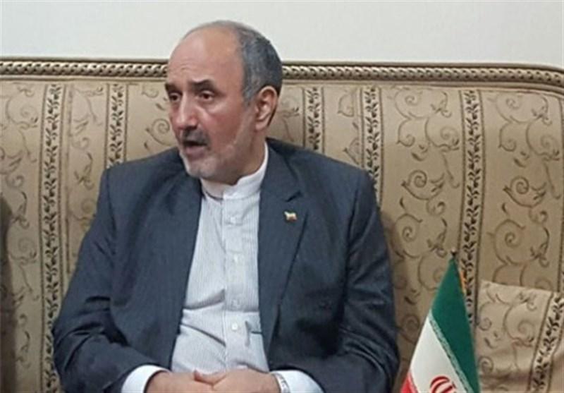 ہنر دوست ایرانی سفیر