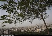 30 درصد اراضی ملی استان مرکزی مستعد ایجاد کانونهای بحرانی گرد و غبار است