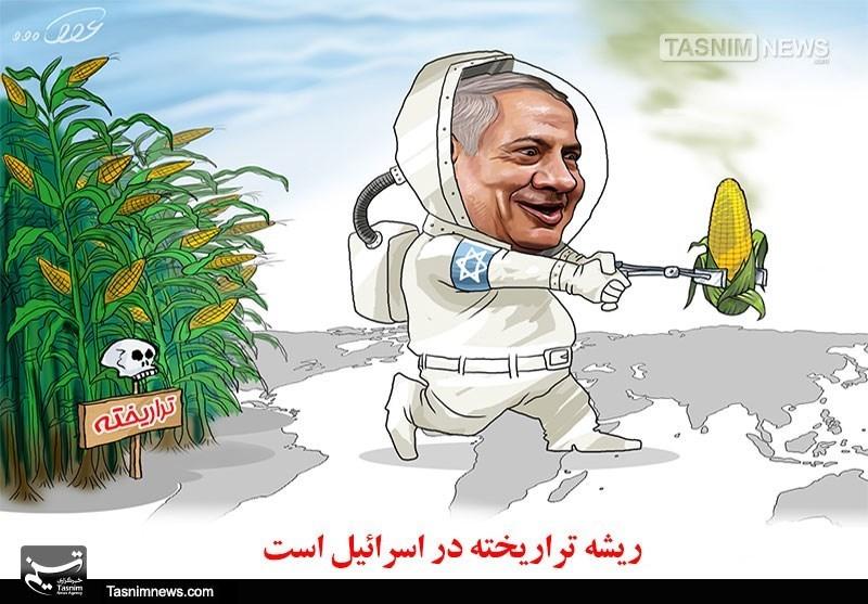 کاریکاتور/ ریشه تراریخته در اسرائیل!!!