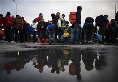 احتمال توقف اخراج پناهجویان افغانستانی دارای کودک از هلند