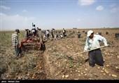 خرمآباد| هجوم کشاورزان غیربومی به لرستان سبب تخلیه شدید سفرههای زیرزمینی شد