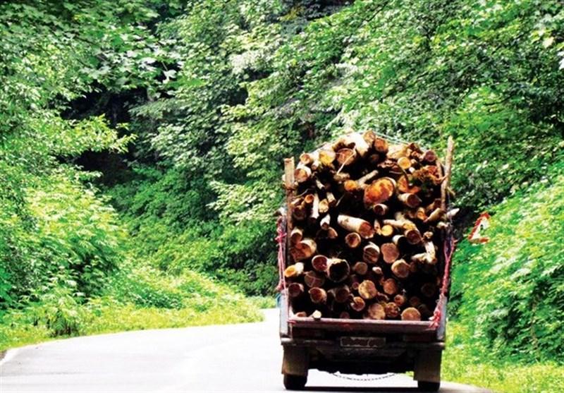 آیا جنگلهایمان نفس میکشند؟