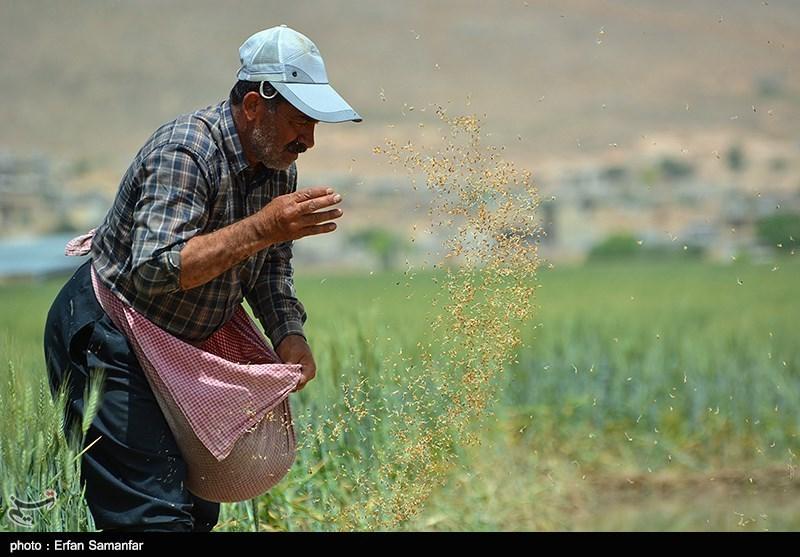 معاون وزیر جهاد کشاورزی در همدان: روشهای سنتی در بخش کشاورزی باید کنار گذاشته شود