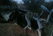 شهادت فرمانده گردان هوایی یگان ویژه صابرین در سانحه ایرانشهر/ سردار مایلی به یاران شهیدش پیوست