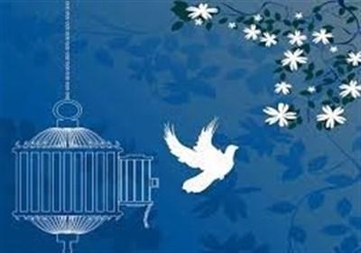 آزادی 134 زندانی غیرعمد از محل منابع هفتواره ملت