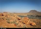 صدور مجوز معدنکاوی در پناهگاه حیات وحش موته غیرقانونی است/ محیط زیست پیگیری میکند