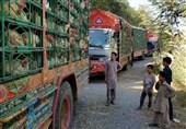 پاکستان مرز مشترک با افغانستان را مسدود کرد