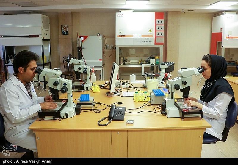 """موسسه """"رویان"""" در درمان ناباروری جزء 4 مرکز برتر دنیا"""