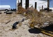جنایت در مکزیک