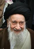 آیت الله سید رضی شیرازی
