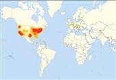 حمله جدید هکرها به سایتهای آمریکایی با سلاحی جدید