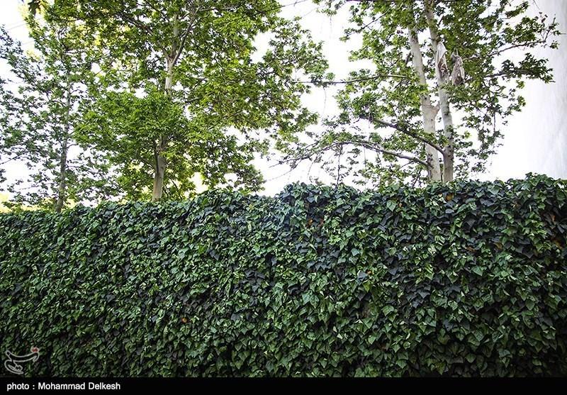 خانه های سبز تهران