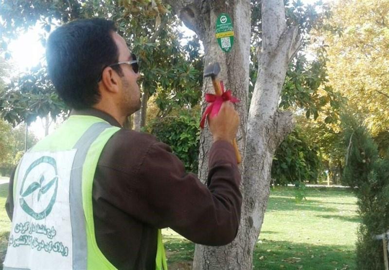 پلاک هوشمندسازی درختان در شیراز نصب شد