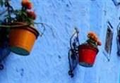 عکس/کوچه های زیبای شفشاون در مراکش