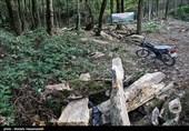 تجمع زیست محیطی به قطع درختان در جنگل سمارود - گلستان