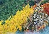 پاییز رنگارنگ در #اسکاتلند
