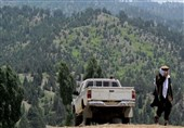 قطع درختان در کنار چشمپوشی مقامات محلی؛ تجارت جدید افراد وابسته به داعش در شرق افغانستان