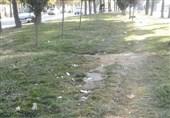 فضای سبز یاسوج