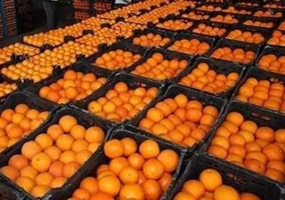 خرید پرتقال