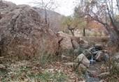 روستای ده شیخ