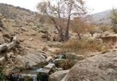 روستای ده شیخ شیراز