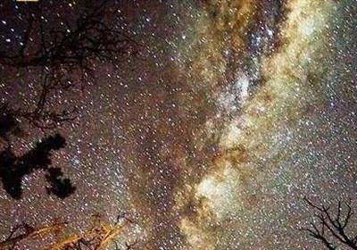 All 468 Stars in Milky Way Stellar Stream Theia 456 Related