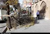 طوفان و گرد و غبار در همدان