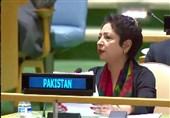 مذاکرات صلح طالبان با دولت کابل تنها راه حل معضل افغانستان است؛ نقش پاکستان در این روند مهم است