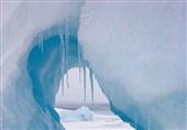 افزایش تولید نفت و گاز در قطب شمال علیرغم نگرانیهای محیط زیستی