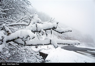 بارش برف در رودسر