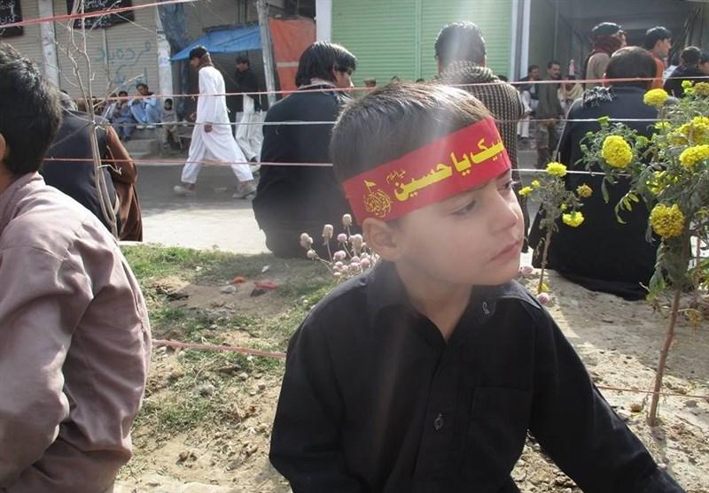 پاراچنار میں چہلم شہدائے کربلا کی یاد میں شبیہ ذوالجناح برآمد/ لاکھوں ماتمیوں کی شرکت