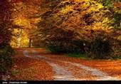 طبیعت پاییزی بهشهر