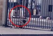 الاحتلال یقتل فلسطینیا عند حاجز قلندیا شمال القدس+فیدیو