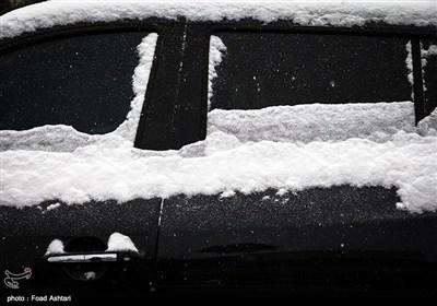 سفید مثل برف