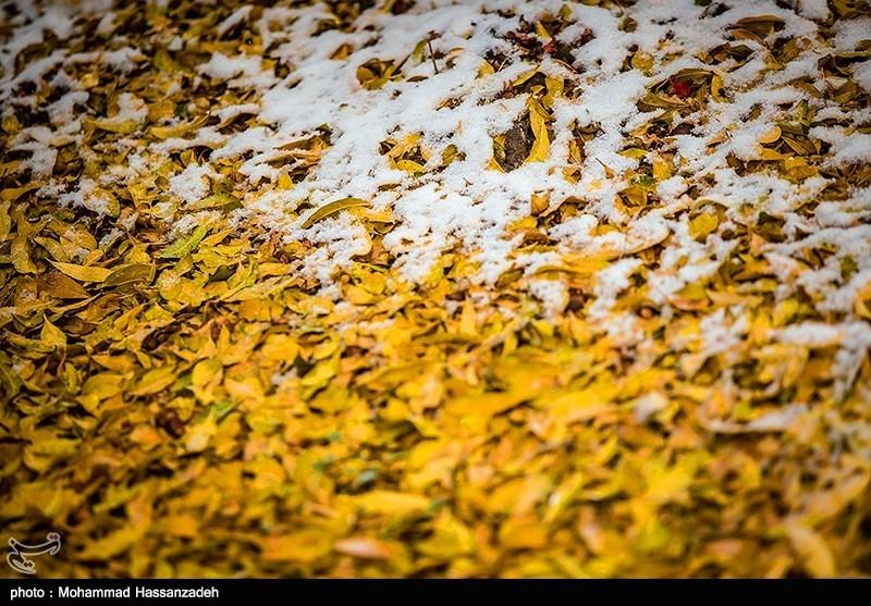 پاییز برفی تهران
