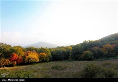 طبیعت پاییزی گرگان