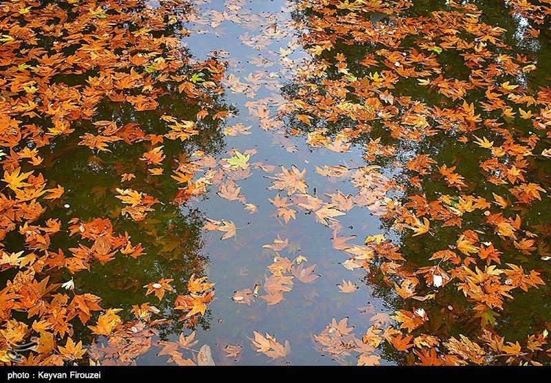 طبیعت پاییزی سنندج