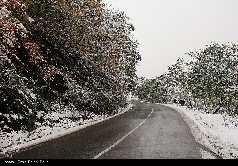 بارش برف در جاده چالوس؛ «پیچ سرهنگ» سفید شد