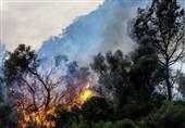 آتش سوزی سرزمین های اشغالی