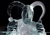 فستیوال یخ
