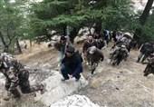 مسلح کردن روستائیان ولایت «نورستان» توسط نهادهای اطلاعاتی افغانستان