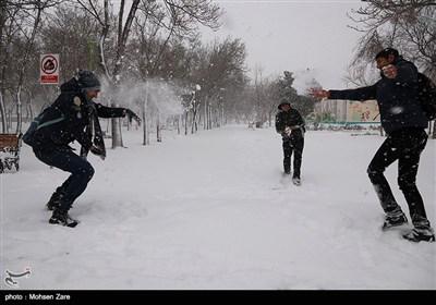 نزول الثلج فی أردبیل