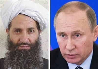 مسکو: طالبان افغانستان یک جنبش سیاسی است و با آنها ارتباط داریم